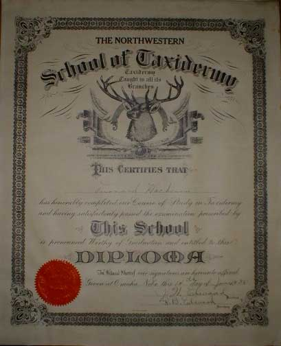 TAXIDERMY CERTIFICATE[1].jpg